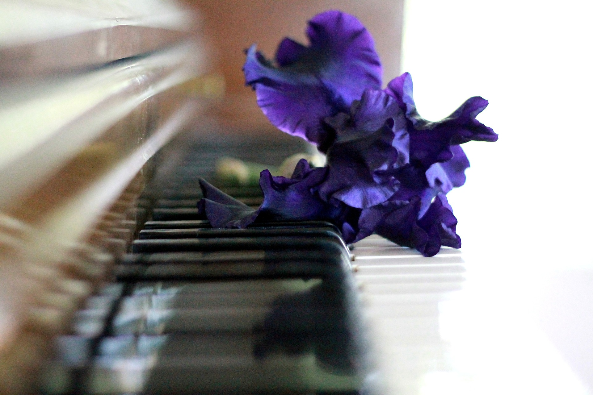 piano-756955_1920
